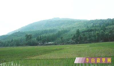 南塔坡红军战场遗址.jpg