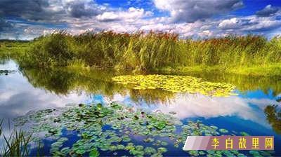 南靛池湿地公园规划设计汇报会